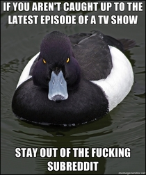 And stop complaining about spoilers