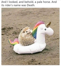and the riders name was Death