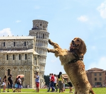 Another holding up the Leaning Tower of Pisa pic