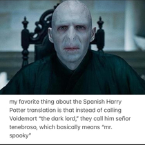 any Harry Potter fans out there