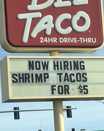 Anyone know a shrimp taco looking for work Immediate hire great benefits Forward me their resume
