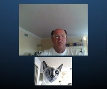 Apparently my dad has been skyping the cat for the last hour