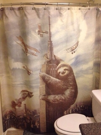 Are we doing shower curtains today Because I also got a new one that Im pretty excited over