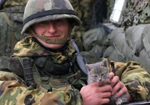 Army Kitten knows hes tougher than Army Dog and cuter too