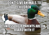 As a parent who has been offered a bunny for my kids