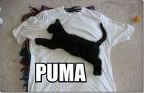 Awesome PUMA shirt