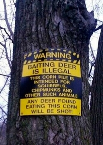 Baiting deer is illegal