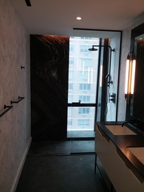 Bathroom of a million dollar apartment in NYC privacy not included