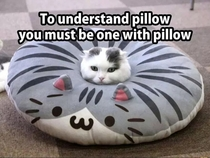 Be the pillow