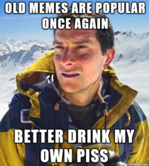 Bear Grylls has a solution for old memes rising