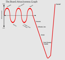 Beard Attractiveness Graph