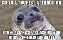 Being an Asian in a western country