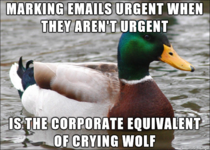 Best advice I can give someone new to the work force for dealing with the higher ups in their company