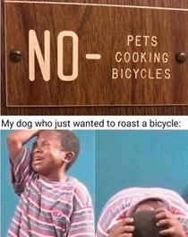 Bicycles arent that tasty anyways