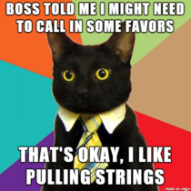 Boss gives Business Cat some advice