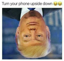 Brain is useless reading upside down faces