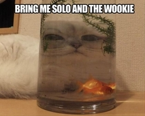 Bring me Solo and the Wookie