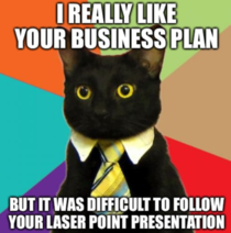 Business cat cant stay focused