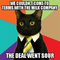 Business cat is trying to make a new deal