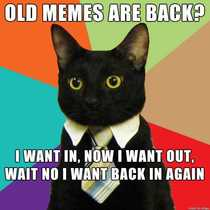 Business cat likes this old meme resurgence