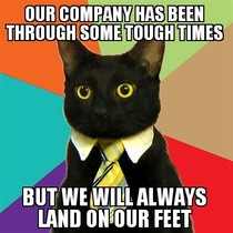 Business Cat on Staying Profitable in a Bad Economy