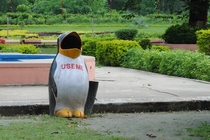 Came across a penguin with low self-esteem in India