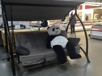 Came across this guy at Costco Looks exhausted