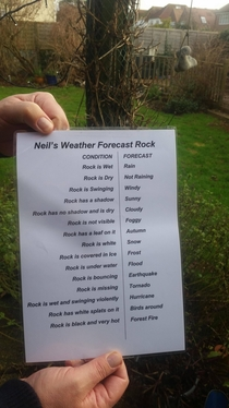 Came home for Christmas to find my dad has made himself a weather rock