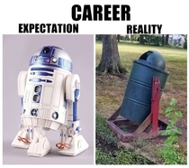 Career Expectations versus Reality