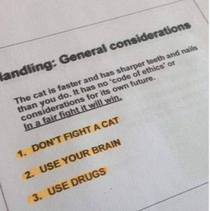 Cat-fighting guidance in a vet school textbook