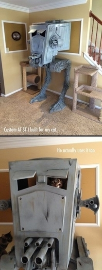 Cat playhouse level Star Wars