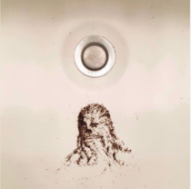 Chewbacca hair shavings art is the only type of art Im interested in