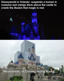 Chinese knock-offs Disneyworld edition