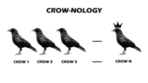 Chronology of crows