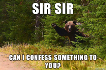 Confession Bear is getting desperate