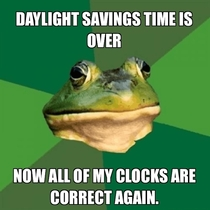 Daylight savings bachelor frog