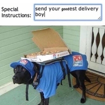 Delivery bork