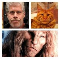Despite the picture I would never call Ron Perlman a pussy to his face