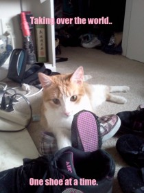 Diamond loves her shoes