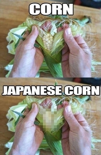 Difference between American and Japanese corn