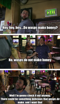 Do wasps make honey