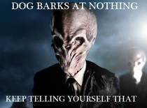 Dog barking at nothing