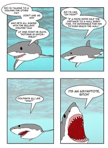 Dolphins Cant Compete With Sharks