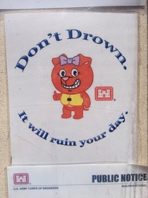 Dont drown it will ruin your day