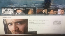 Downloaded a plug on my bosses computer that replaces all website photos with pictures of Nic Cage