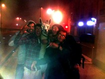Drunk guys in my hometown Bordeaux France stole a llama last night and went for a walk in town Brilliant picture