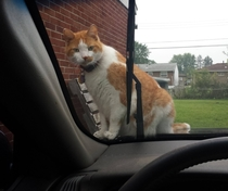 Dude get off the car I gotta go to work Fuck you this is my car now