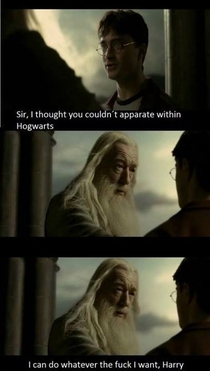 Dumbledore doesnt sugarcoat it