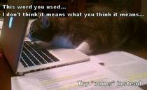 Editor kitty proofs your NaNoWriMo novel