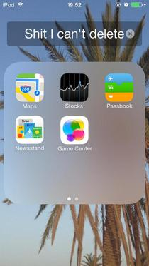 Every iOS user has a folder like this